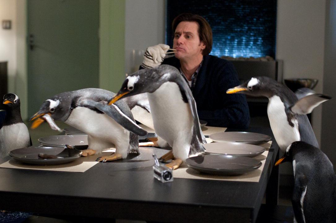 Resultado de imagem para os pinguins do papai