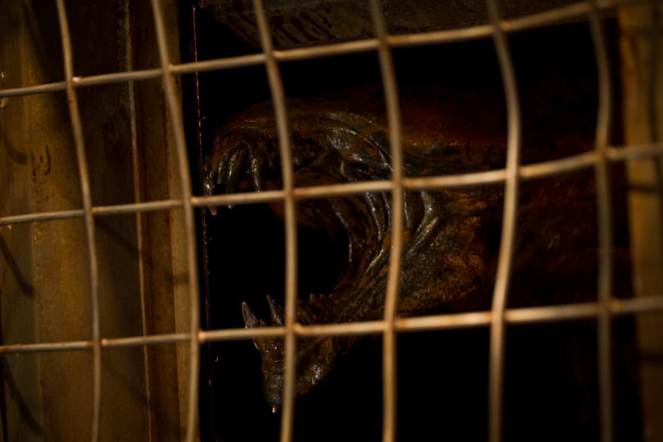 Riddick 3 : Foto
