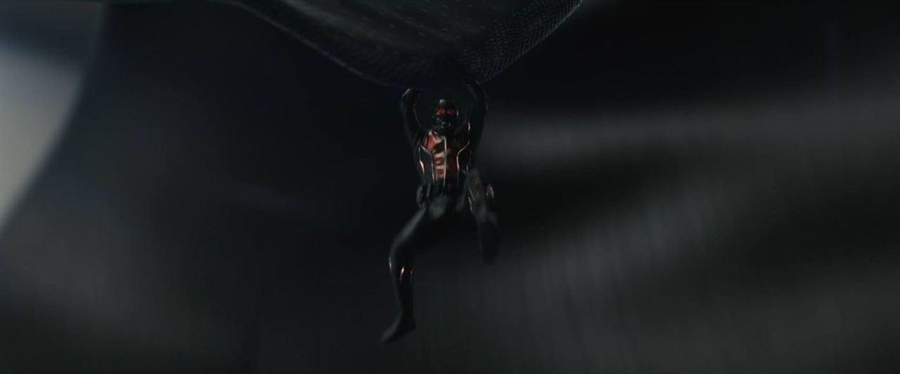 Homem-Formiga : Foto