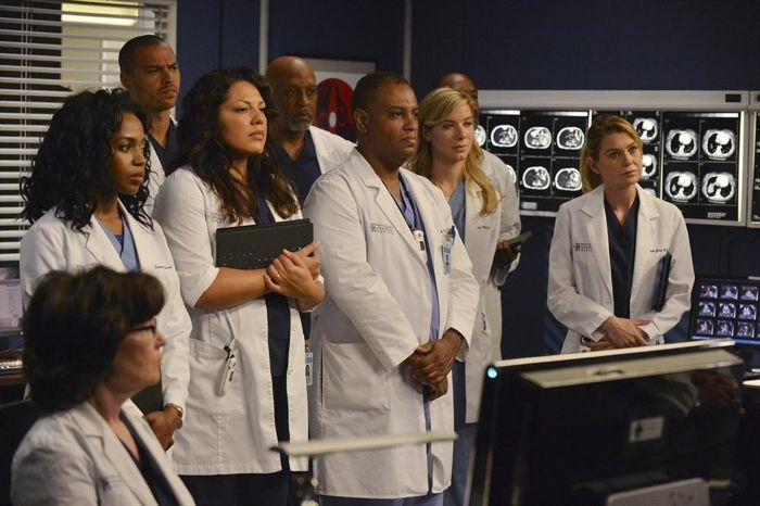 Foto Ellen Pompeo, James Pickens Jr., Jerrika Hinton, Jesse Williams, Sara Ramirez