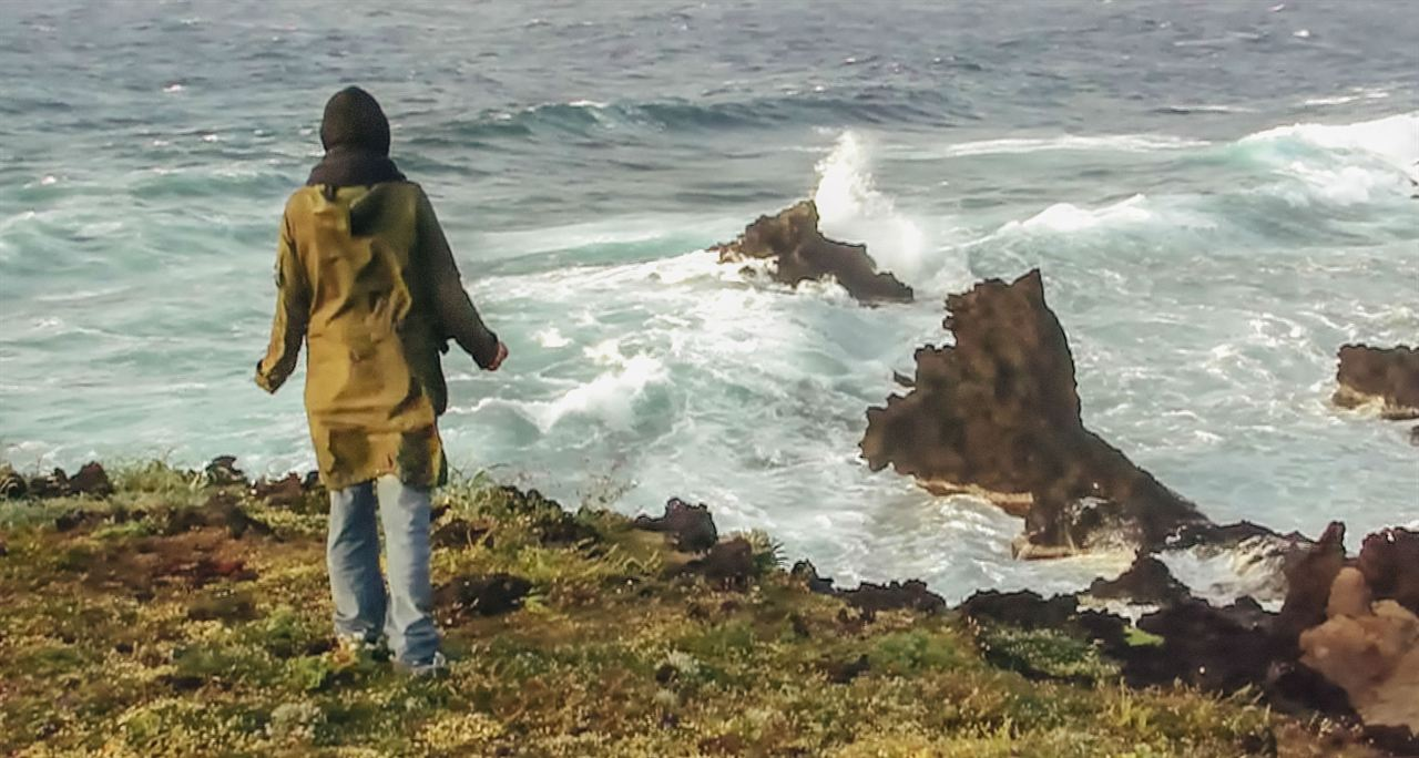 Olmo e a Gaivota : Foto