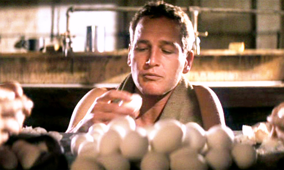 Rebeldia Indomável : Foto Paul Newman