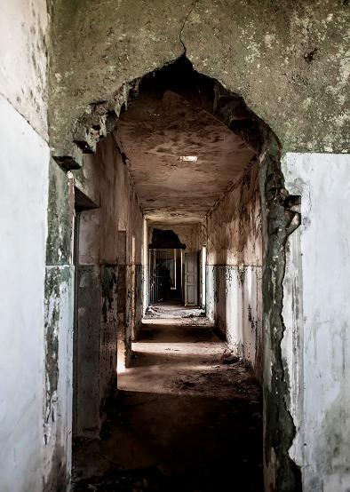 Holocausto Brasileiro : Foto