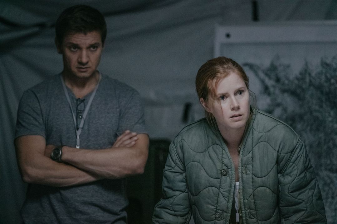 A Chegada : Foto Amy Adams, Jeremy Renner