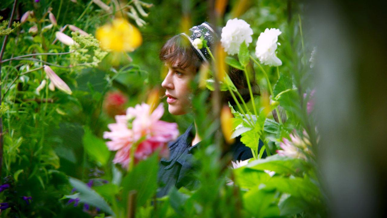 Uma Beleza Fantástica : Foto Jessica Brown Findlay