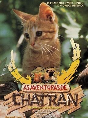 As Aventuras de Chatran : Poster