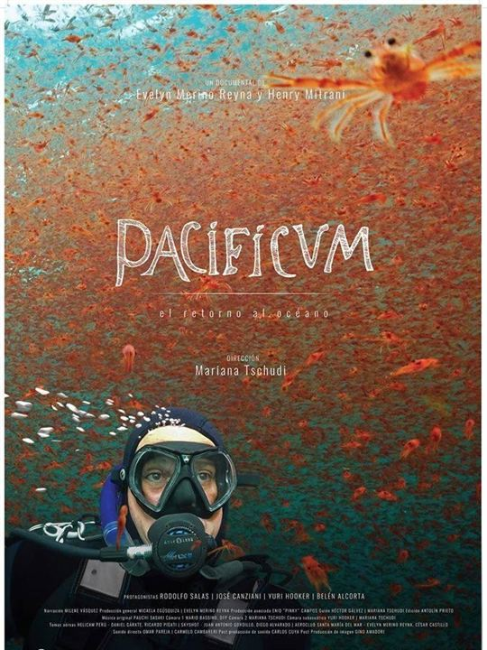 Resultado de imagem para Pacificvm