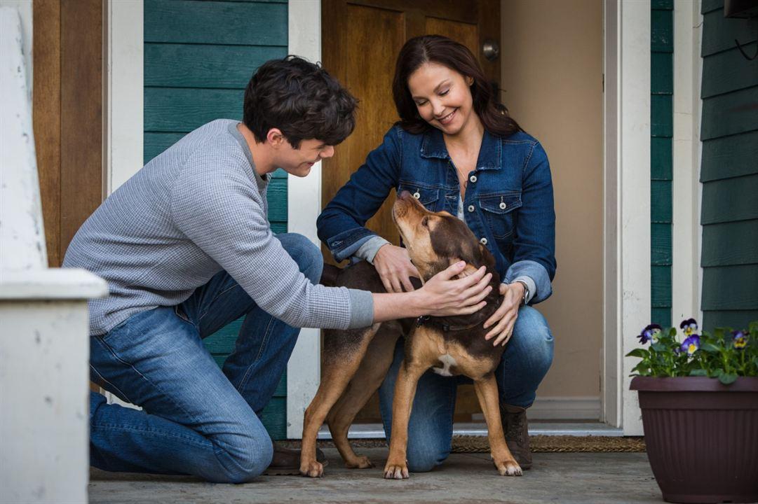 A Caminho de Casa : Foto Ashley Judd, Jonah Hauer-King