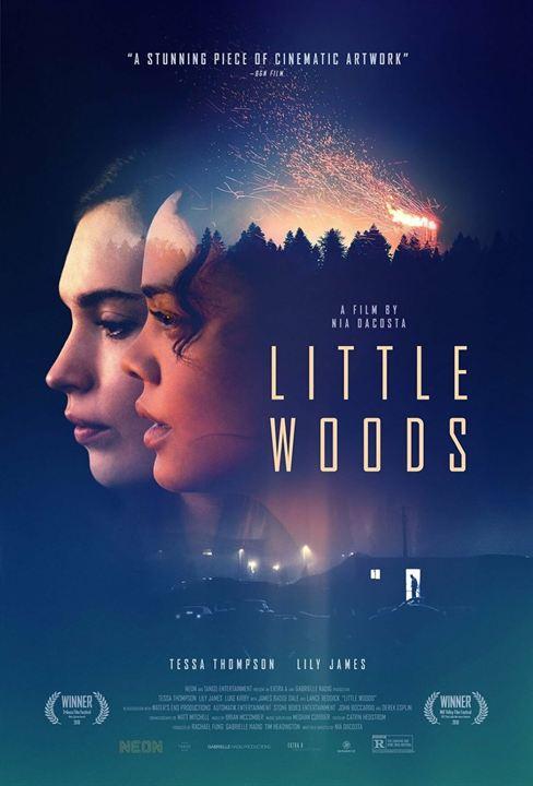 Little Woods : Poster