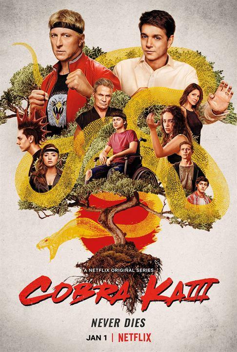 Cobra Kai : Poster