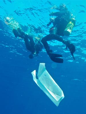 Oceanos de Plástico : Poster