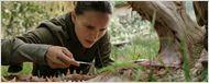 Annihilation: Natalie Portman enfrenta um jacaré na primeira foto do longa