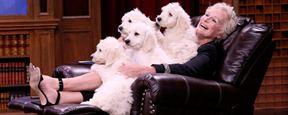 Glenn Close relembra dias de Cruella de Vil e rouba cachorrinhos do Mike de Stranger Things