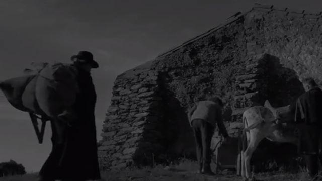 Raiva Trailer Original