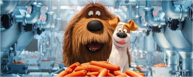 Rede de cinema espanhola promove sessão especial de Pets - A Vida Secreta dos Bichos aberta para cachorros