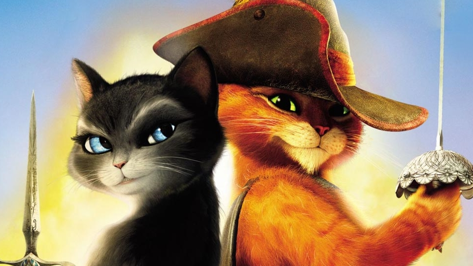 Resultado de imagem para gatos de botas