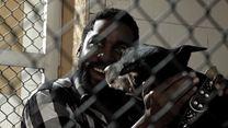Mundo Cão Trailer Oficial