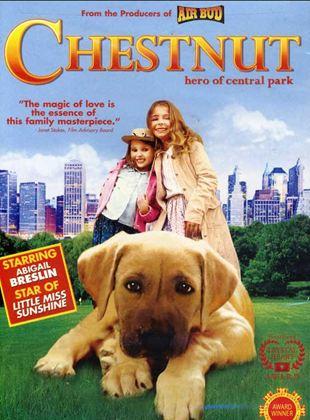 Chestnut – O Herói do Central Park