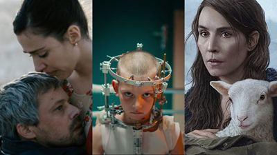 Mostra SP 2021: Confira os filmes premiados que serão exibidos no festival brasileiro