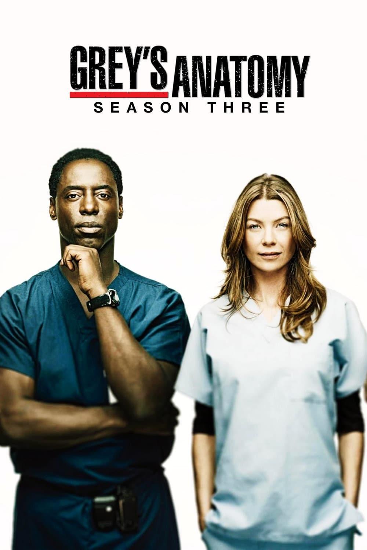 15 Temporada De Grey's Anatomy Assistir grey's anatomy temporada 3 - adorocinema
