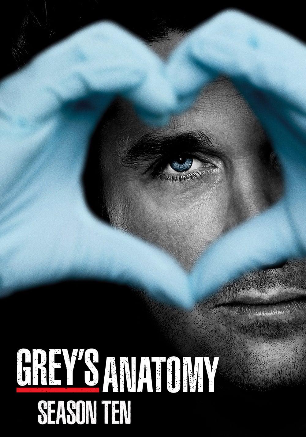 15 Temporada De Grey's Anatomy Assistir grey's anatomy temporada 10 - adorocinema