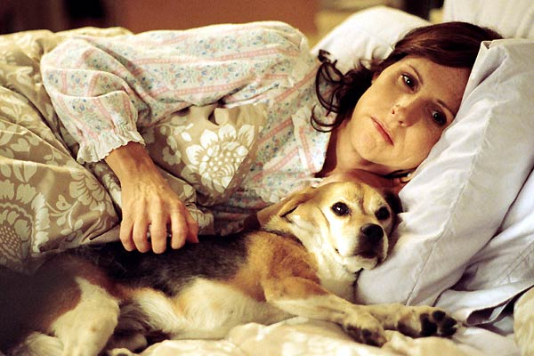 Amor Pra Cachorro: Molly Shannon, Mike White
