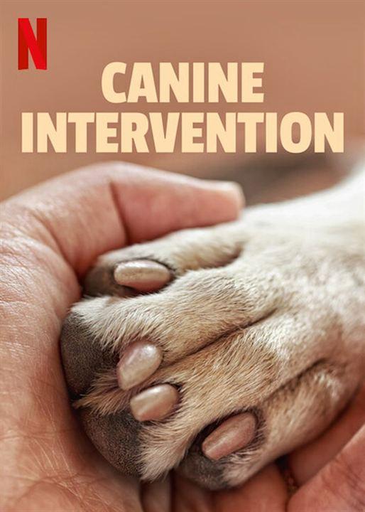 Intervenção Canina : Poster