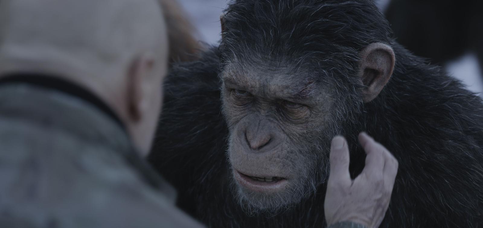 Baixar 475931 Planeta dos Macacos   A Guerra 720p Dublado Download